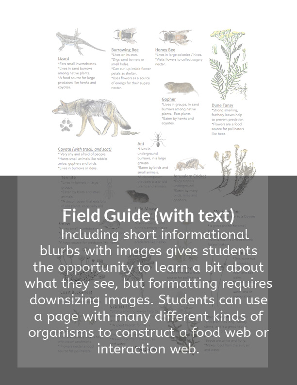 6a. Field guide with text_with captions